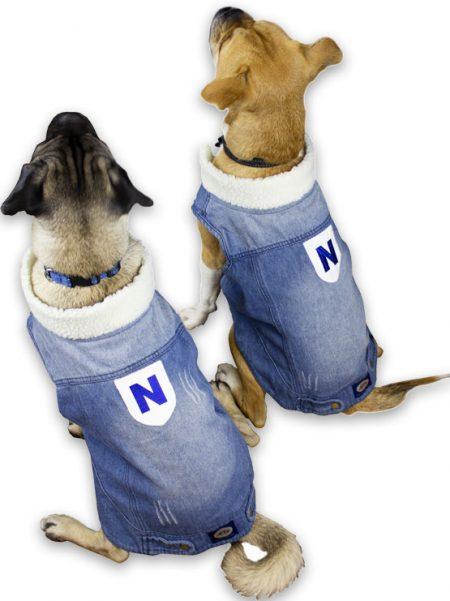 Dogo Vest